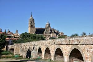 Calva en Salamanca-23-07-16 (3)
